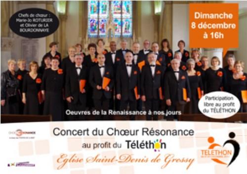 2013 12 08 Affiche du concert